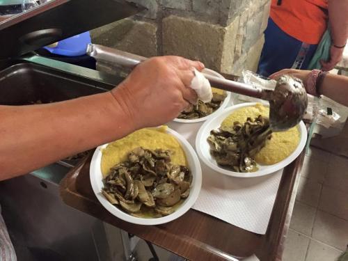 Festa del Fungo (10)